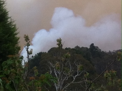 View from my deck in Blackheath today of back burning.